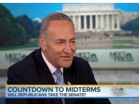 Schumer: Better Ground Game Will Put Democrats 'Over the Top' in November