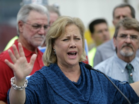 NRA Spends $585K Highlighting Senator Landrieu's Gun Control Ties