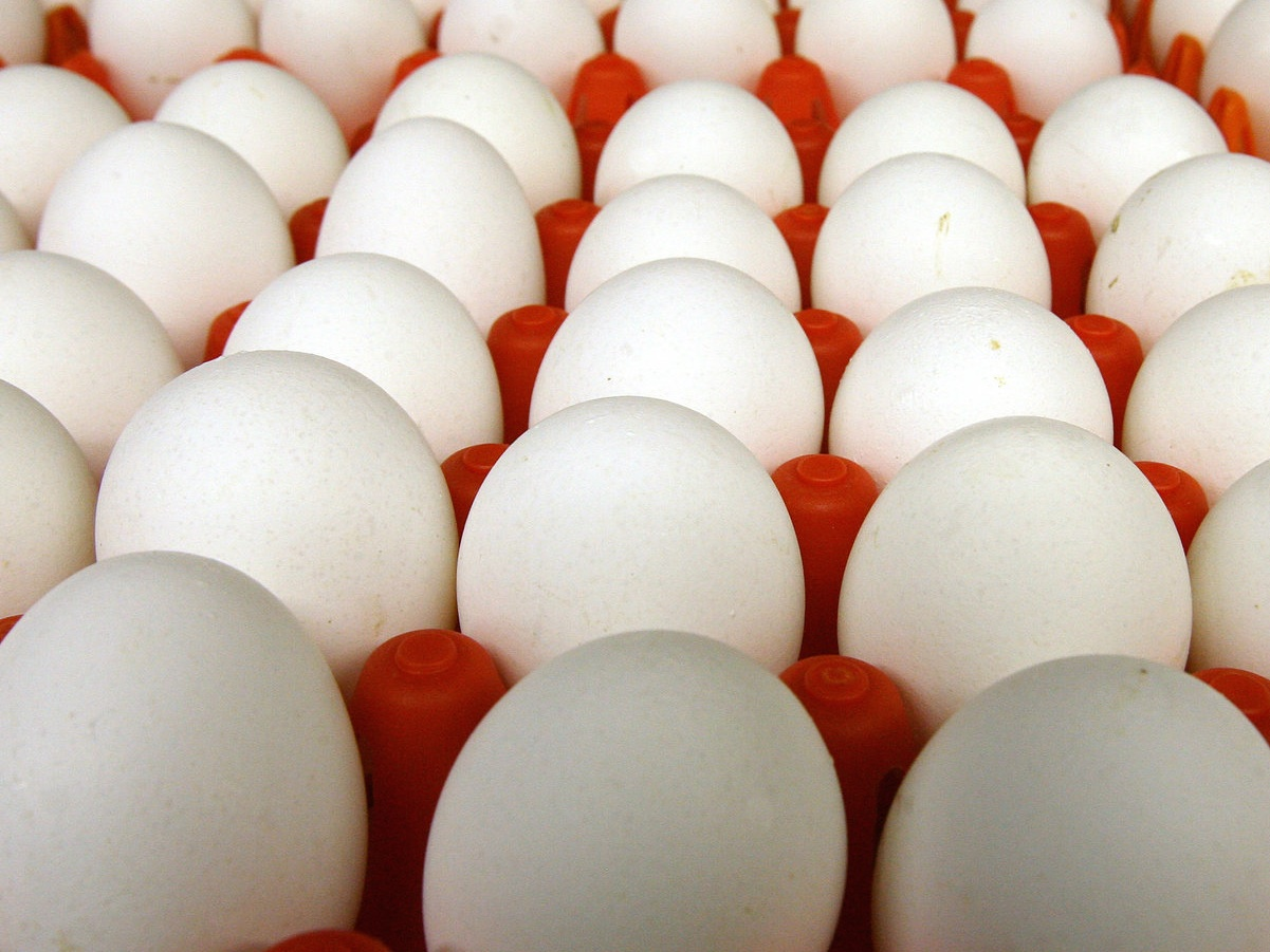 California Eggs: a Commerce Clause Case Liberals May Lose