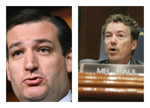 2016: Cruz, Rand Lead Tea Party Presidential Poll; Christie, Jeb Bush Last
