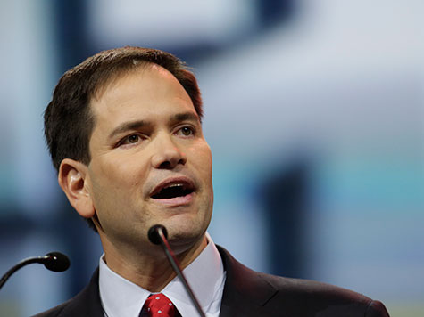 Marco Rubio Not Worried About 'Formidable' Jeb Bush in 2016