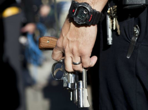 Police Officer Cannot Buy Gun, Ammunition in Illinois