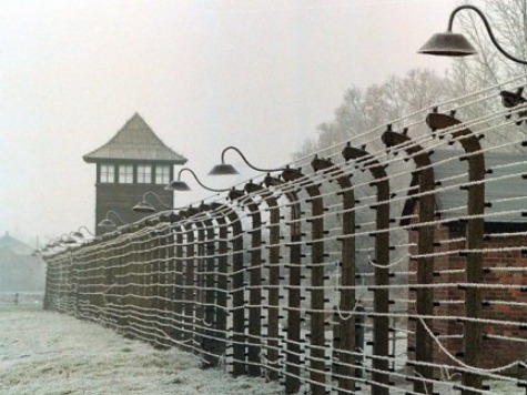New Holocaust Memoir Recounts Nazis Using Boy for Target Practice