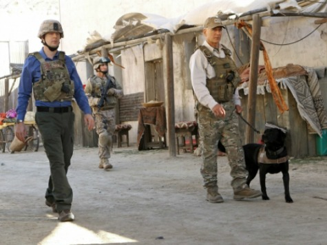 'NCIS' Honors U.S. Marine and Their War Dogs