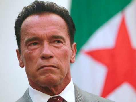 Did Arnold Schwarzenegger 'Sabotage' His Movie Comeback?