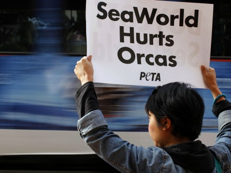 Kathy Najimy's Anti-SeaWorld PETA Ad Banned, Lawsuit Filed