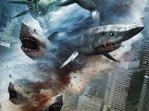 Judah Friedlander: 'Sharknado 2' Is 'Most Important Film Ever Made About Climate Change'