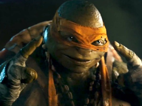 Pet Stores Prepare for 'TMNT'-Inspired Buying Spree