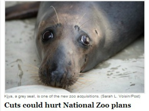 WaPo on Sequestration: THINK OF THE SEALS