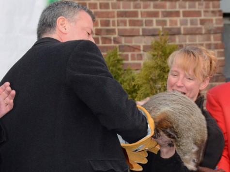 After de Blasio Kills Groundhog, Zoo Covers It Up