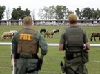Vicious Mexican Drug Cartel Arrested for Laundering Money in Horse Racin