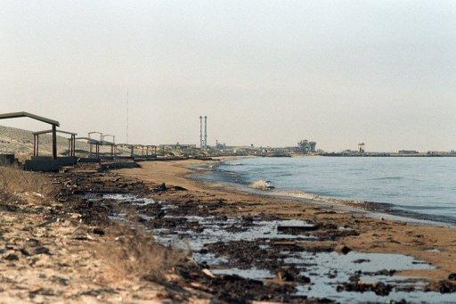 Saudi Coastguard 'Capture 15 Iranians'
