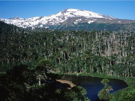 Minor Eruption of Chilean Volcano Over Christmas