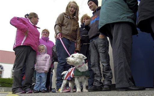 Falklanders Overwhelmingly Choose To Remain British Overseas Territory