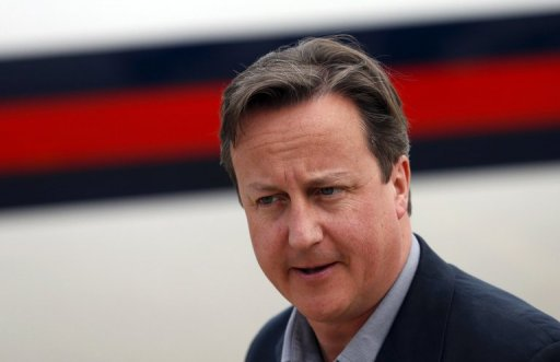 Cameron Wants Syria Peace Conference Pledge at G8