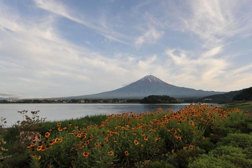 Local Residents Celebrate Mt. Fuji's World Heritage Status