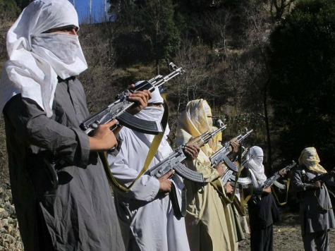 World View: Afghan Taliban Launches Last Spring/Summer Offensive Against NATO