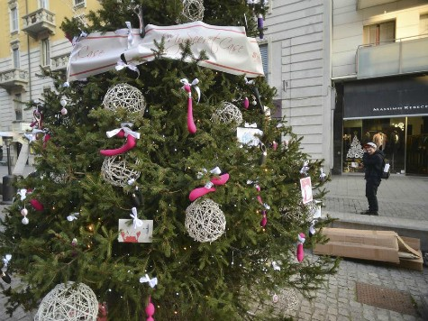 Italian city revokes permit for sex toy Christmas tree