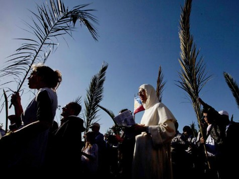 The Biblical Account of the First Palm Sunday