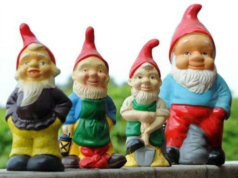 Reward for Missing Gnomes
