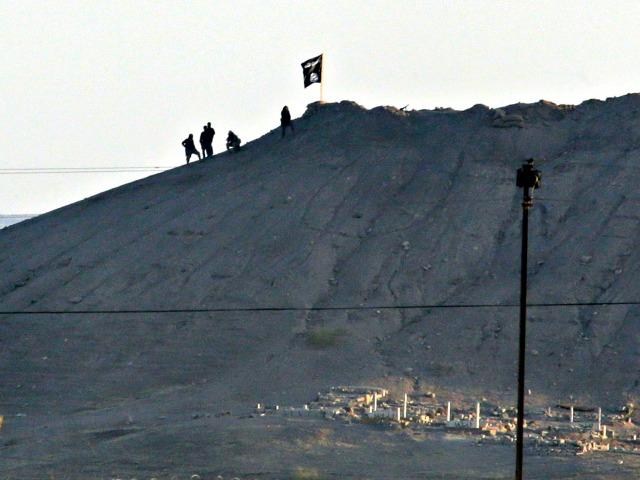 German Deputy Speaker: Turkey Must End Support of ISIS