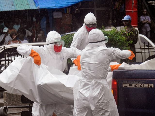 National Physician Organization Director: 'Restricted Entry' Necessary to Stop Spread of Ebola