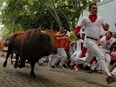 Man Trampled by Bull at Alameda County Bull Run