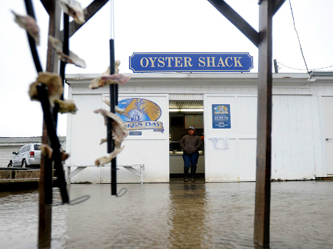Feds Force Oyster Factory to Close