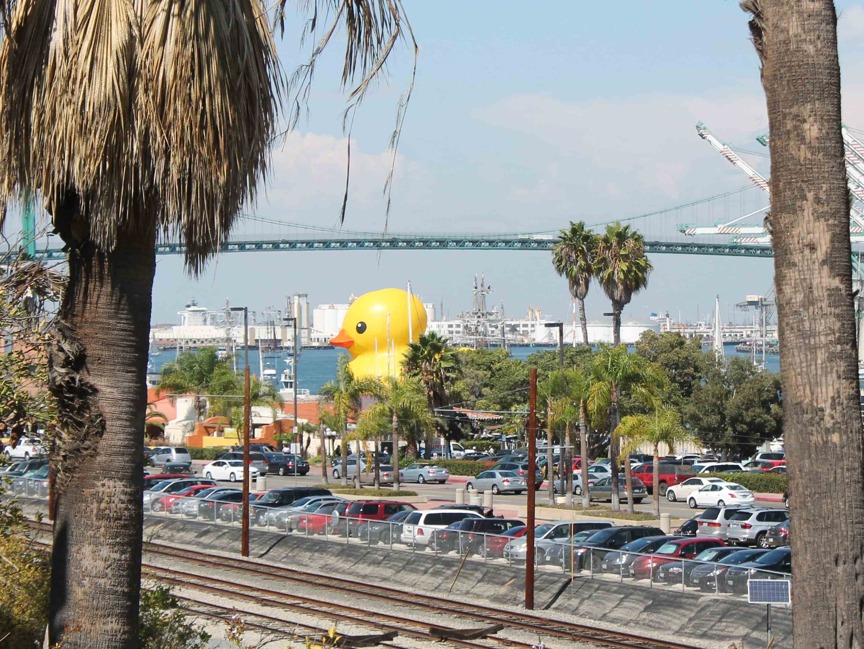 Giant Duck Arrives in Los Angeles