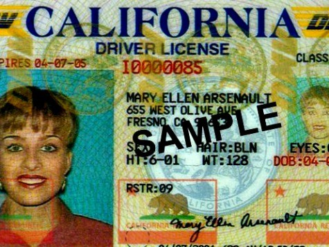 Homeland Security Approves Design of Driver's Licenses for California's Illegal Immigrants