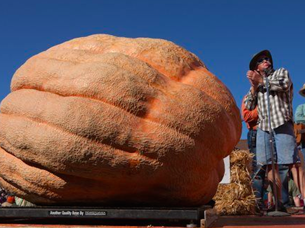 2,058 Pound Pumpkin Breaks North American Record