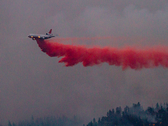 Firefighting Pilot Dies After Plane Crashes in Yosemite