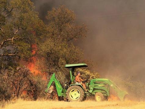 Marijuana Farmer Named 'Smoke' Arrested on Suspicion of Starting Massive Wildfire
