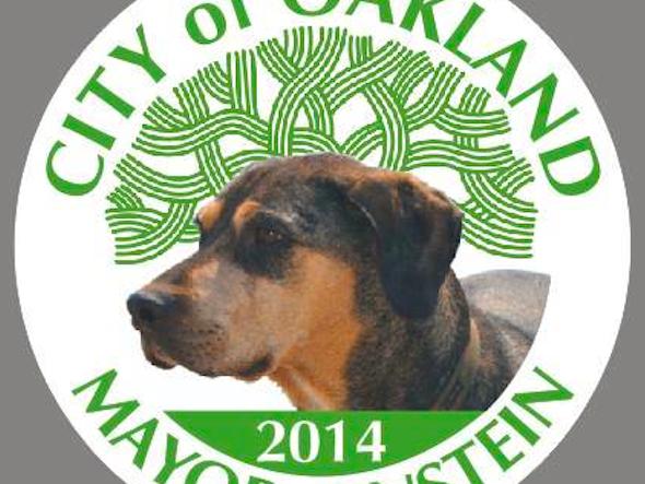 Dog Runs for Oakland Mayor