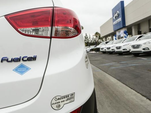 Hydrogen Fuel Cell and Battery-Powered Vehicles Start Competing