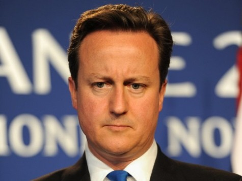 Cameron's Seven-Point Plan for EU Reform is 'Futile'