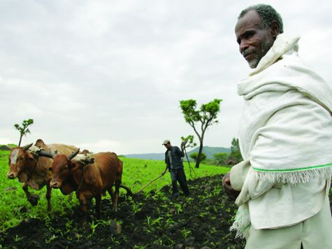 Ethiopian Farmer Sues British Government – For Sending Aid to Ethiopia