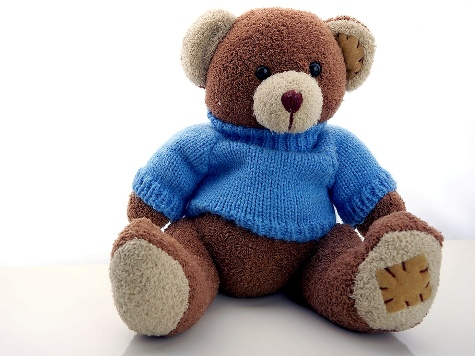 Over-Competitive Parents Force Schools to Ban Teddy Bear Activities