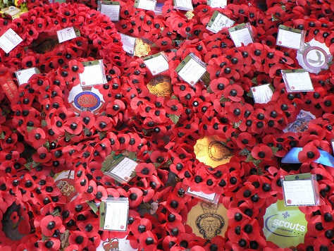 Poppies Burnt by Heartless Vandals on Armistice Day