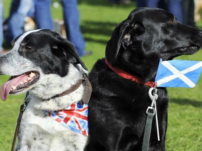Scottish Vote Reveals Cracks in United Kingdom