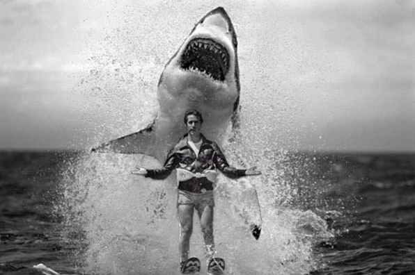 Global Warming Jumps the Shark: the Week in Climate Stupid