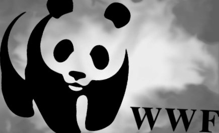Wildlife Populations Have Declined By 52 Per Cent Since 1970 Says WWF. What Absolute Rubbish!