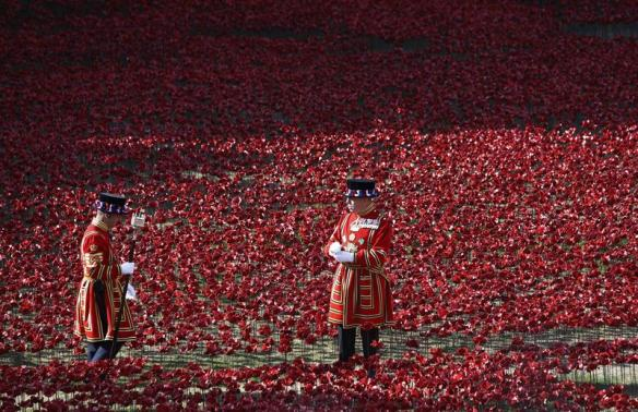 War Hero Calls for Tower of London Poppy Installation to Stay Longer