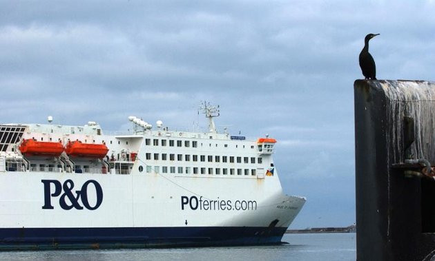 No Sign of Cross-Channel Ferry Passenger who Went Overboard