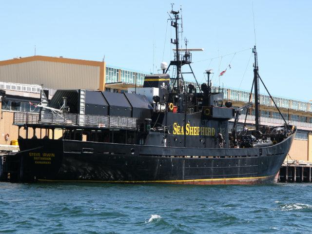 Eco-Hypocrisy as Sea Shepherd Vessel Dumps 500 Litres of Diesel Into Sea
