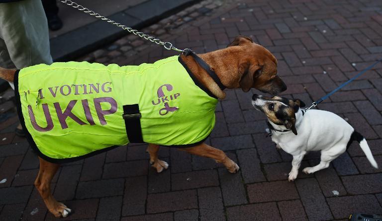 UKIP Set for Landmark Poll Win