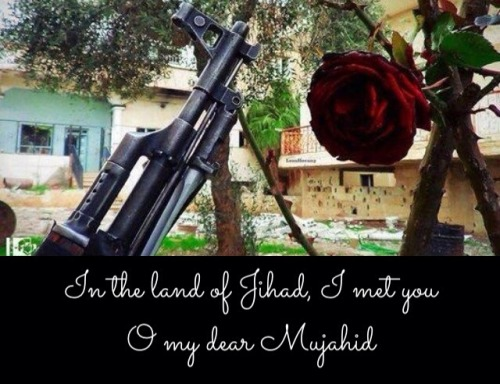 Mills and Boon Meets Jihad in the Diary of a Jihadi Bride