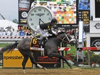 No Triple Crown: Oxbow Upsets Orb to Win Preakness