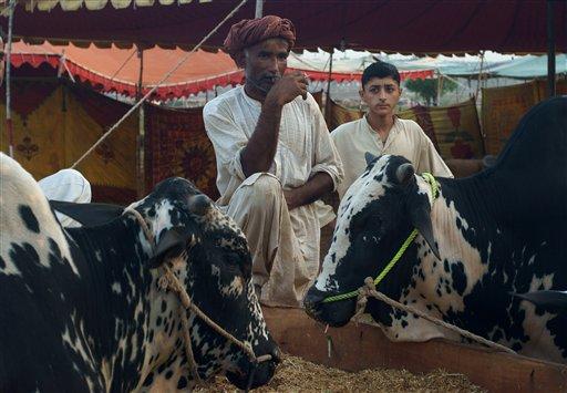 Bomb Kills 2 in Pakistan Anti-Polio Drive