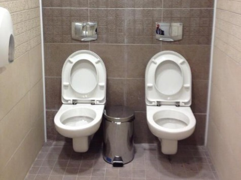 Stalls with Dual Toilets at Sochi Games?